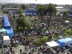 ABOUT THE ARCATA BAY OYSTER FESTIVAL