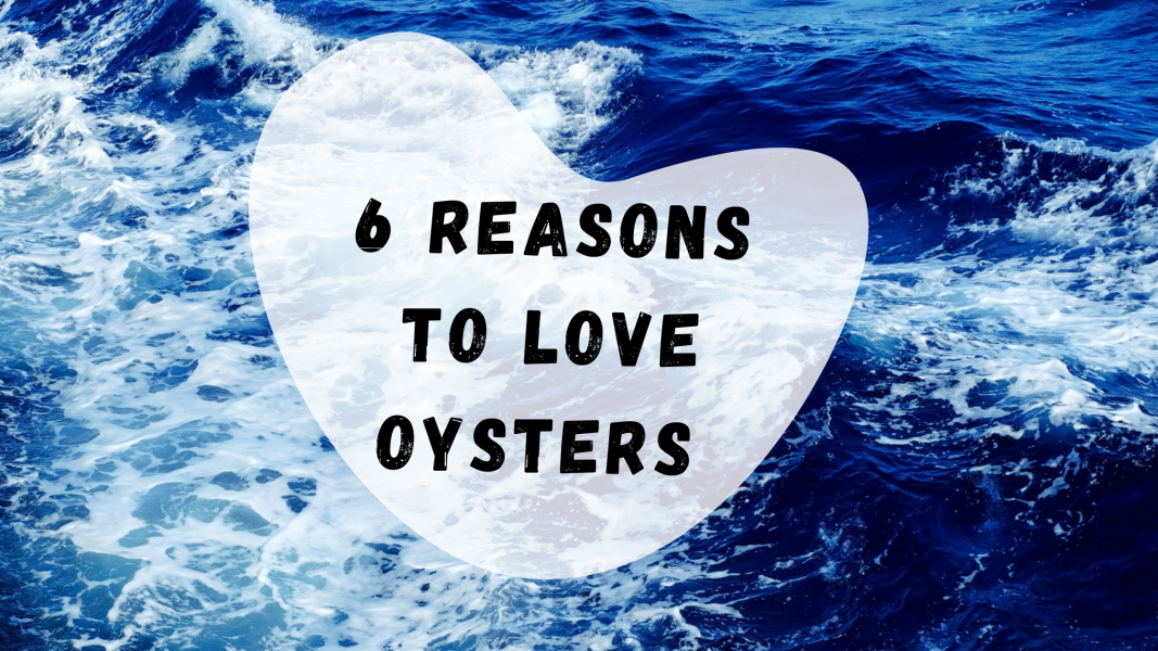 6 REASONS TO LOVE OYSTERS MORE THAN EVER.