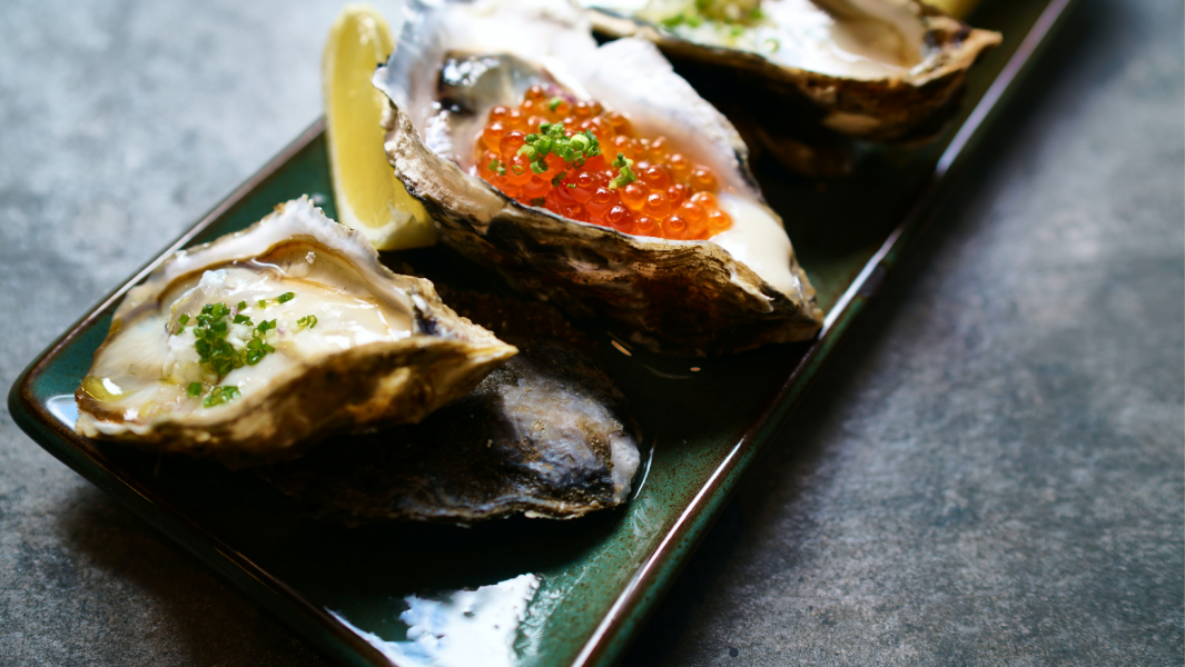 How to store the oysters properly?
