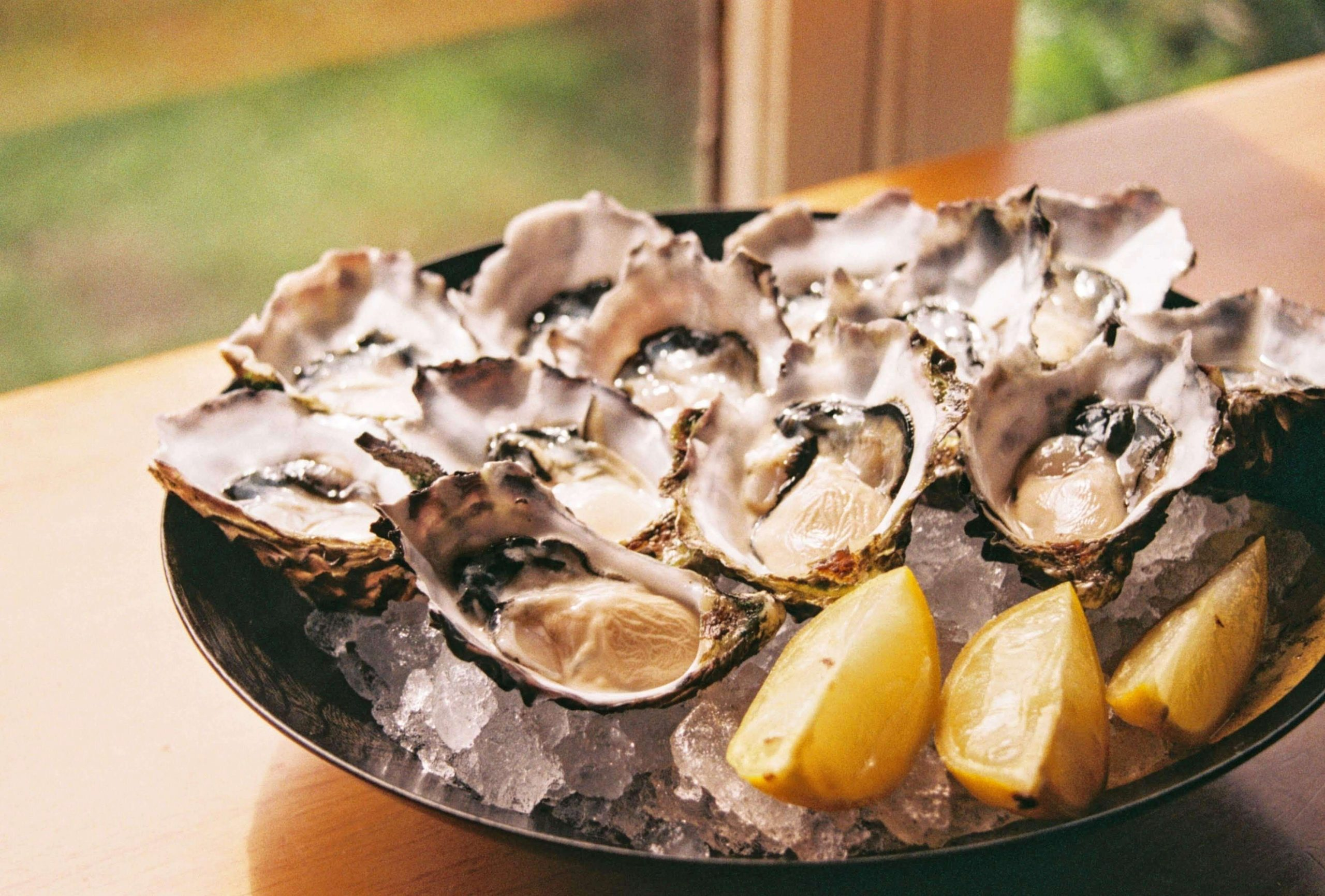 oysters benefits
