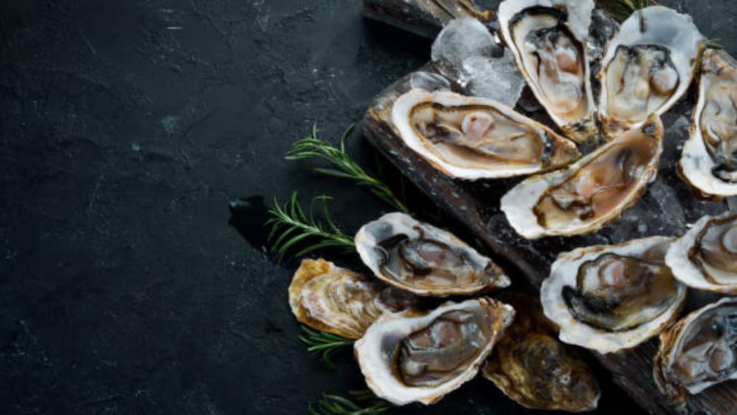 "Amite Oyster Festival – ""the pearl of Louisiana"" 2022"