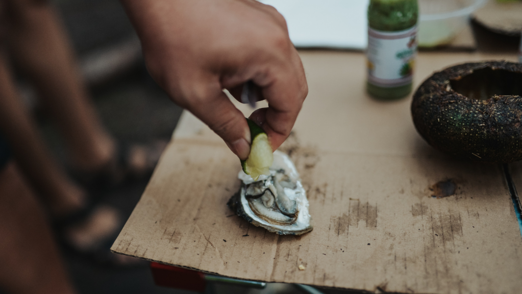 How to shuck the oysters in the proper way?