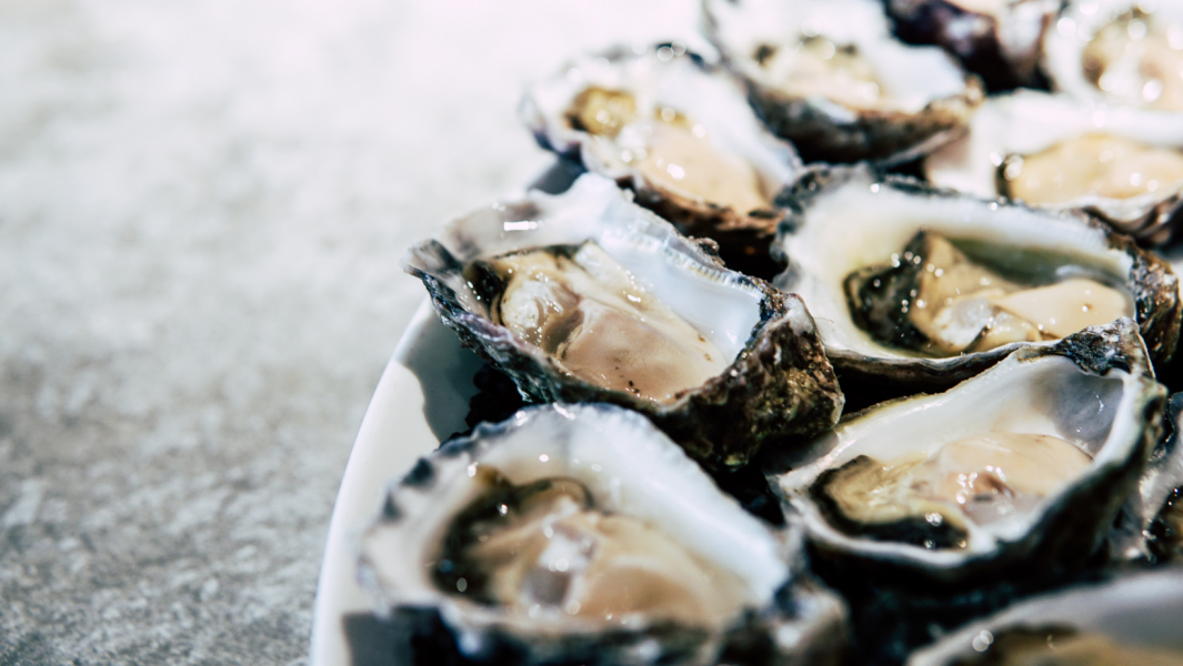 New Orleans Oyster Festival – Celebrate the oysters at the oyster capital of the US