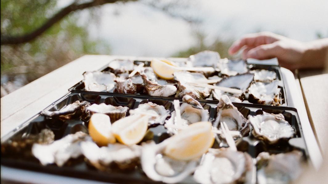 Florida Seafood Festival – 2021