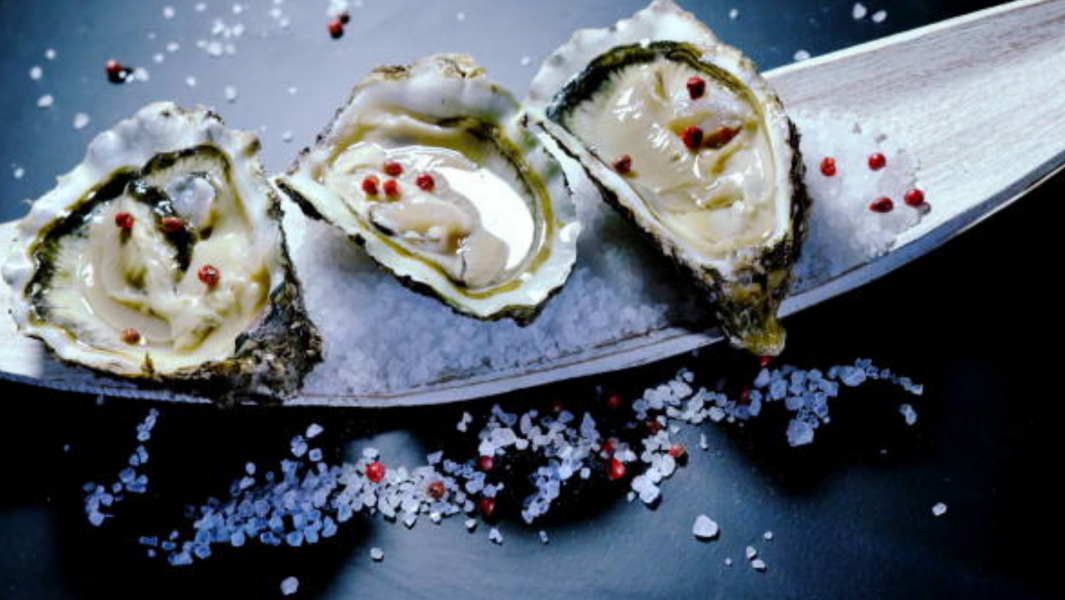Bluff Oyster and Food Festival – 2022